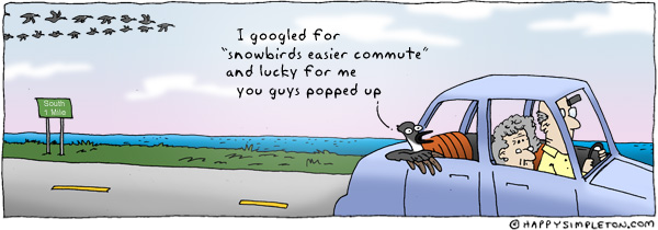 Description: A goose riding hitching a ride in the back of a car. Caption: I googled for 'snowbirds easier commute' and lucky for me you guys popped up