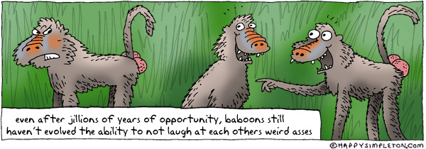 Description: Two baboons laughing at a third. Caption: even after jillions of years of opportunity, baboons haven't evolved the ability to not laugh at each other's weird asses